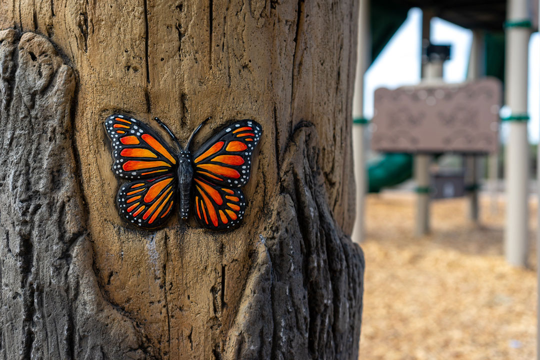 playground butterfly